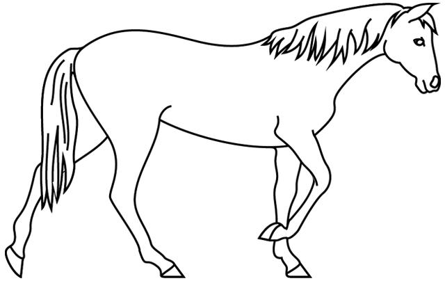 Coloriage imprimer un cheval qui marche turbulus - Dessin cheval a imprimer ...