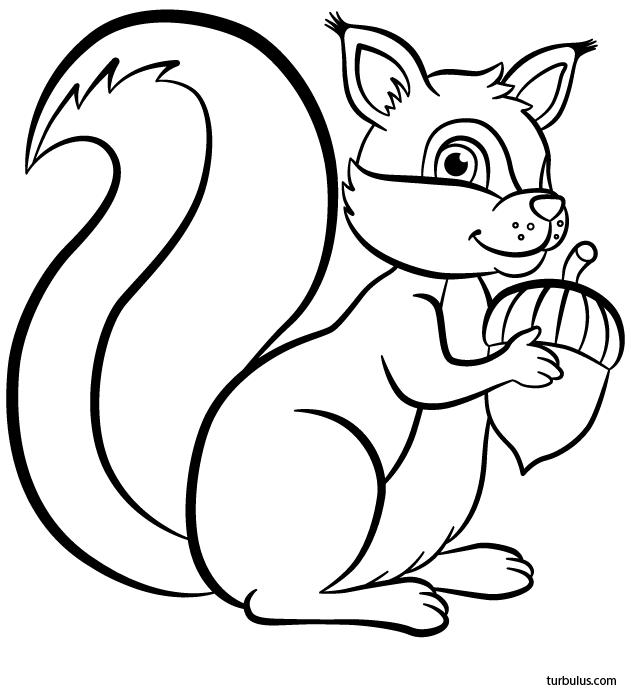Coloriage Un Ecureuil Turbulus Jeux Pour Enfants