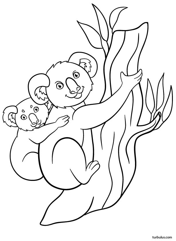 Coloriage Un Koala Et Son Petit Sur Son Dos Turbulus