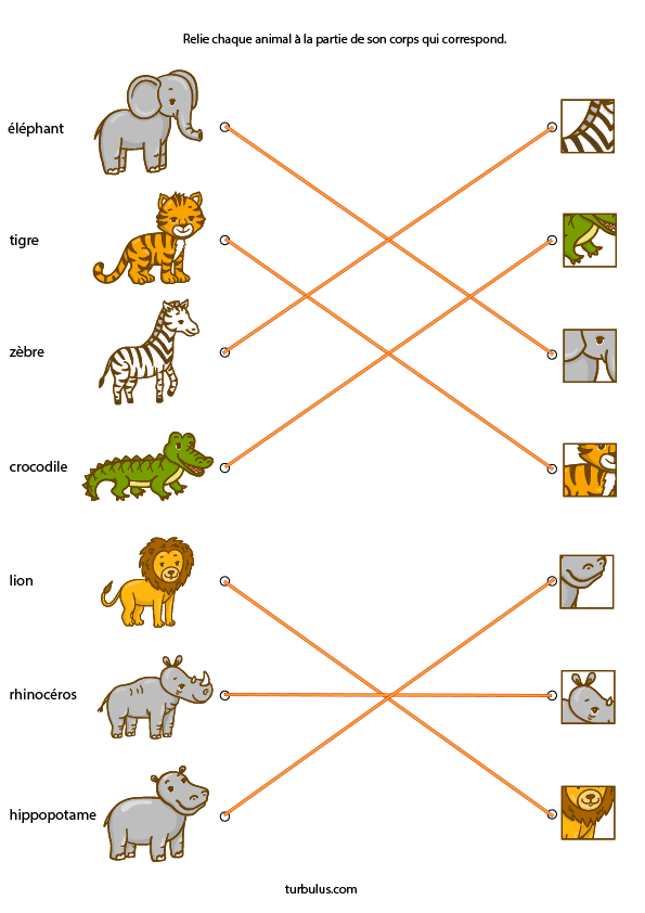 Exercice A Imprimer Les Animaux Turbulus Jeux Pour Enfants