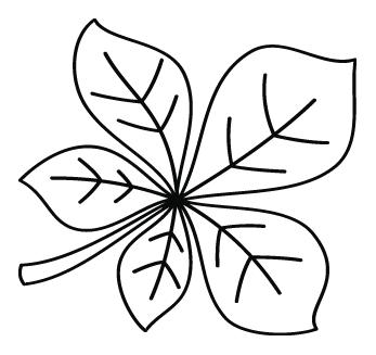 Coloriage une feuille de marronnier turbulus jeux pour - Coloriage feuilles d automne ...