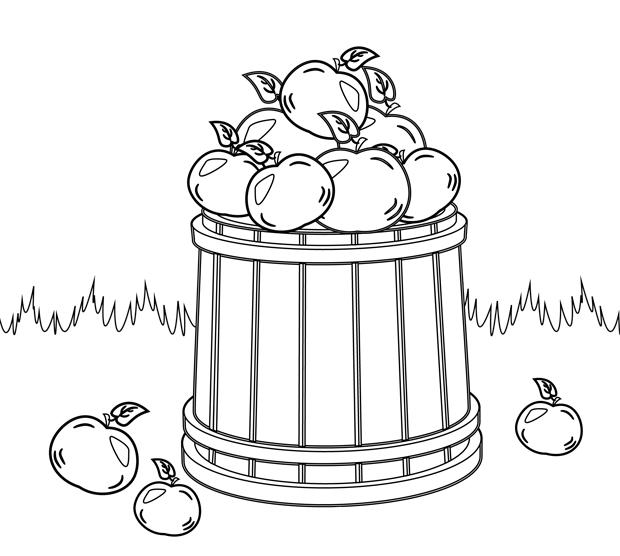 Coloriage imprimer la cueillette des pommes - Dessin pomme a colorier ...