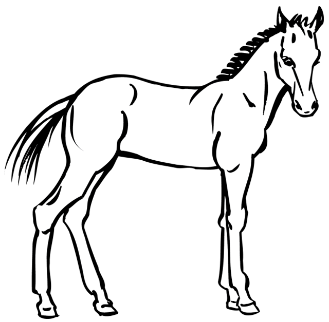 Coloriage imprimer un cheval dessin 7 - Dessin facile de cheval ...