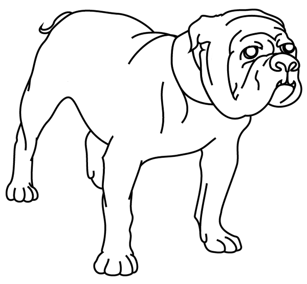 Coloriage imprimer un chien le bouledogue turbulus - Jeux d animaux trop mignon ...