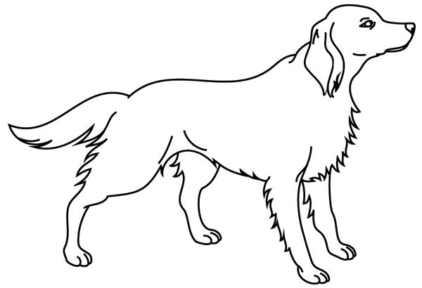 Coloriage imprimer un chien dessin 8 turbulus jeux - Dessin d un chien ...