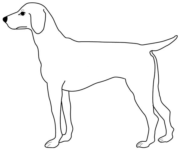 Coloriage imprimer un chien dessin 9 - Dessin d un chien ...
