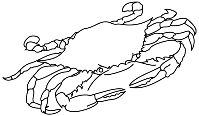 Coloriage crabe my blog - Dessiner un crabe ...