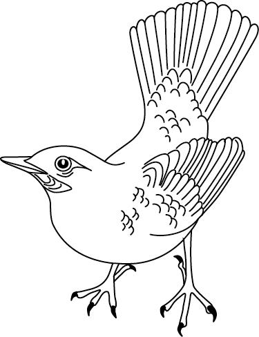 Coloriage A Imprimer Un Oiseau Turbulus Jeux Pour Enfants