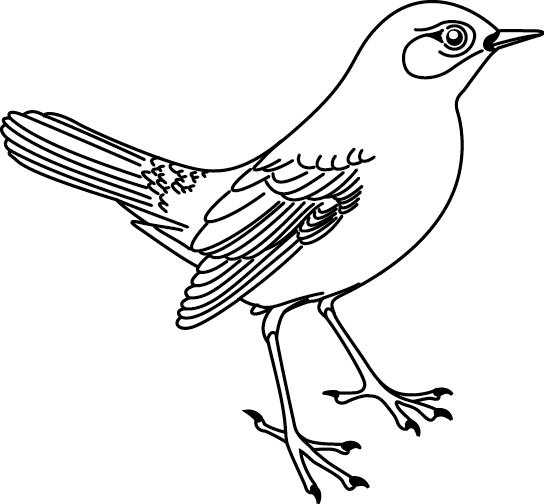 Coloriage imprimer un oiseau turbulus jeux pour enfants - Dessin d oiseau a imprimer ...