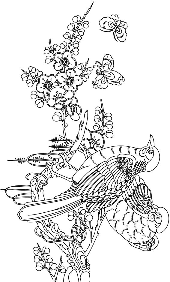 Coloriage imprimer des oiseaux sur une branche - Branche arbre dessin ...