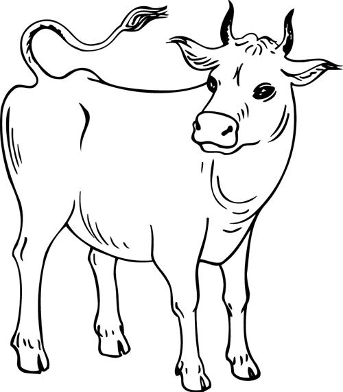 Coloriage imprimer une vache turbulus jeux pour enfants - Dessiner une vache facile ...