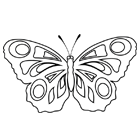 Coloriage : un papillon
