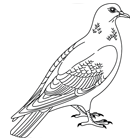 Oiseaux turbulus jeux pour enfants - Coloriage pigeon ...