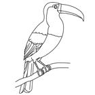 Oiseaux turbulus jeux pour enfants - Coloriage toucan a imprimer ...