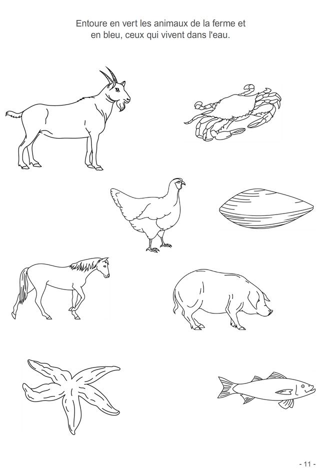 Jeu imprimer les animaux turbulus jeux pour enfants - Coloriage 4 ans a imprimer ...
