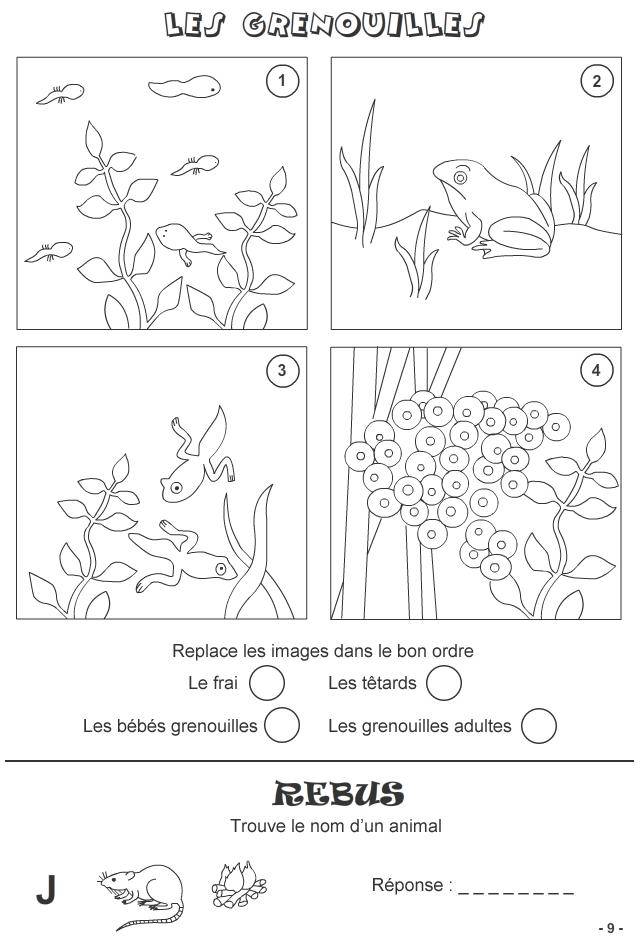 Jeux A Imprimer Pour Enfants De 7 Ans Et Plus Page 9 Turbulus